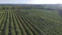 Vue aérienne de la distillerie du Gorvello et du village de Sulniac (1)
