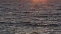 Illustrations coucher de soleil sur la mer à Melbourne