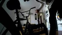 Portrait de Matthias Dandois, quadruple champion du monde de BMX