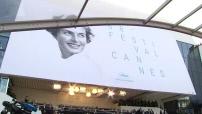 68ème Festival de Cannes interdiction de prendre des selfies sur le tapis rouge