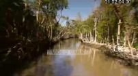 Etats-Unis : illustrations Parc des Everglades, Miami Little Havana
