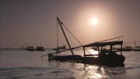 Zanzibar : illustrations cartes postales plage au coucher de soleil et repas de nuit et plage de jour