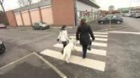100% Animaux : devenir famille d'accueil de chien-guide pourquoi pas vous