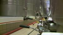 Illustrations: Centre de production du champagne de Gh.Mumm