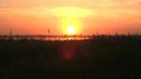 Camargue Sunset