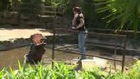 Zoo d'Amnéville dans les vestiaires du bestiaire