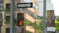 bicolor Fire pedestrians in Toronto