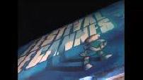 """Cannes : montée des marches pour la projection du film """"Kill Bill II"""""""