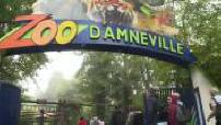 Visite au zoo d'Amnéville