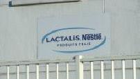 Update on Lactalis case