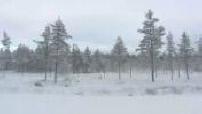 Illustration Finlande