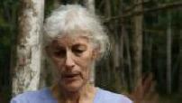 Meet Sara Bennett, biologist that collects in the Amazon monkeys part 2