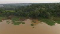Vues aeriennes de la jungle amazonienne