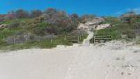 Illustrations des plages Palm Beach et Cable Beach près de Sydney