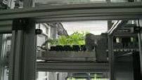 LE MAG : Urban farms the crops of tomorrow