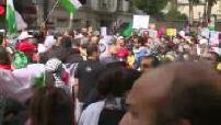 Paris pro-Palestine demonstration: illustration procession
