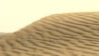 Emirats arabes unis : Illustrations de désert