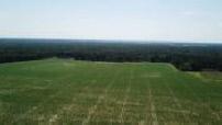 Aerial views by drone from Marne-la-Vallée