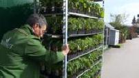 MAG - Dans les coulisses d'une jardinerie Truffaut