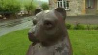 MAG - La réintroduction des ours continue de faire débat