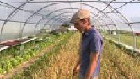 Les agriculteurs français passent de plus en plus au bio