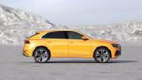New : the Audi Q8