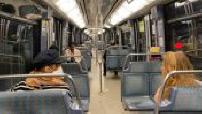 Coronavirus / Containment: Parisian metro deserted