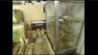 Cannabis products and hemp fiber warehouse