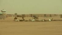 Opération Barkhane au Mali : convoi de l'armée française - parcours de Gao à Tessalit - accident dans le désert