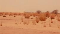 Opération Barkhane au Mali : convoi de l'armée française de Gao à Tessalit - ensablement dans le désert