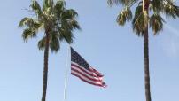 Drapeau US flottant au vent entre deux palmiers