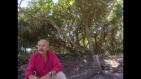 """Interview + Tournage pour """"Les Bronzés 3"""" de Patrice Leconte"""