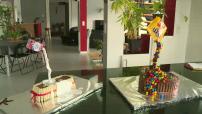 "Trend ""gravity cake""cakes very showpieces"
