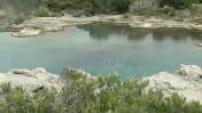 Nouvelle Zélande : Les geysers de Te Urewera