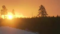 Illustrations cartes postales coucher de soleil Suède