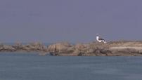 Illustration paysage typique breton + pont de l'Iroise
