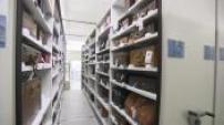 Louis Vuitton : archives à St Denis, usine à St FLorence, siège avec laboratoire qualité, atelier de réparation à Cergy
