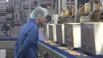 Chaine de fabrication de chips de soja TooGood