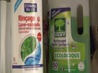 Maison : le business du nettoyage vert