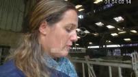 Une exploitation agricole entièrement robotisée et connectée en Bretagne