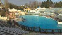 Delphinarium du Parc Asterix + extraits et répétition de spectacles