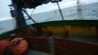 A bord d'un bâteau de pêche à la sardine