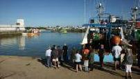 Vente de sardines au bateau