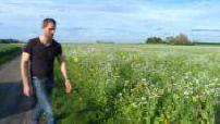Polémique sur le glyphosate : Emmanuel Macron veut l'interdire d'ici 3 ans