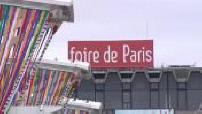 Paris Fair Illustration