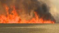 Cerf-volant palestinien enflammé : incendie au kibboutz Nir Am