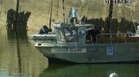 Mag - Port de pêche et plongeurs