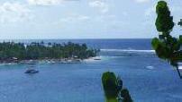 Nouvelles compagnies low-cost : les Antilles pour 100 euros