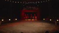 LE MAG : Horse show at the Cirque Gruss