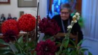 Mag - Testimony Ginette Kolinka, Auschwitz camp visit